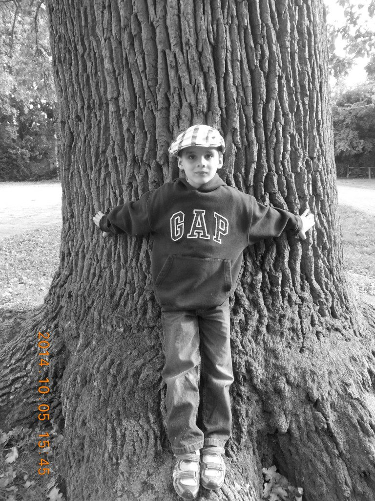 Bakai Balázs, 7 éves